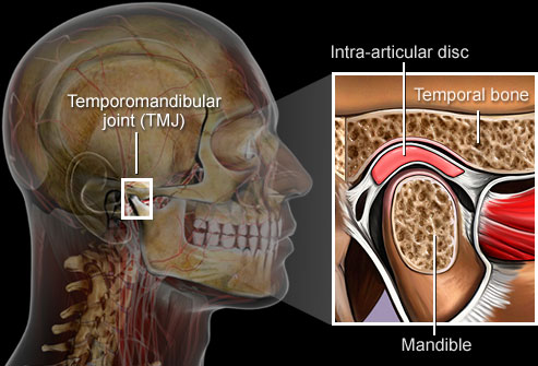 getty rm illustration of TMJ - 17 مشکل دهان
